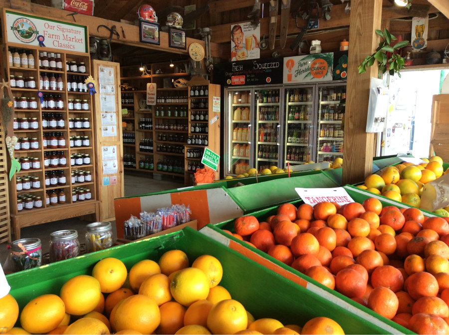 The Showcase of Citrus Farm Stand