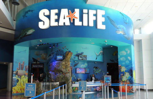 Orlando Sea Life Aquarium